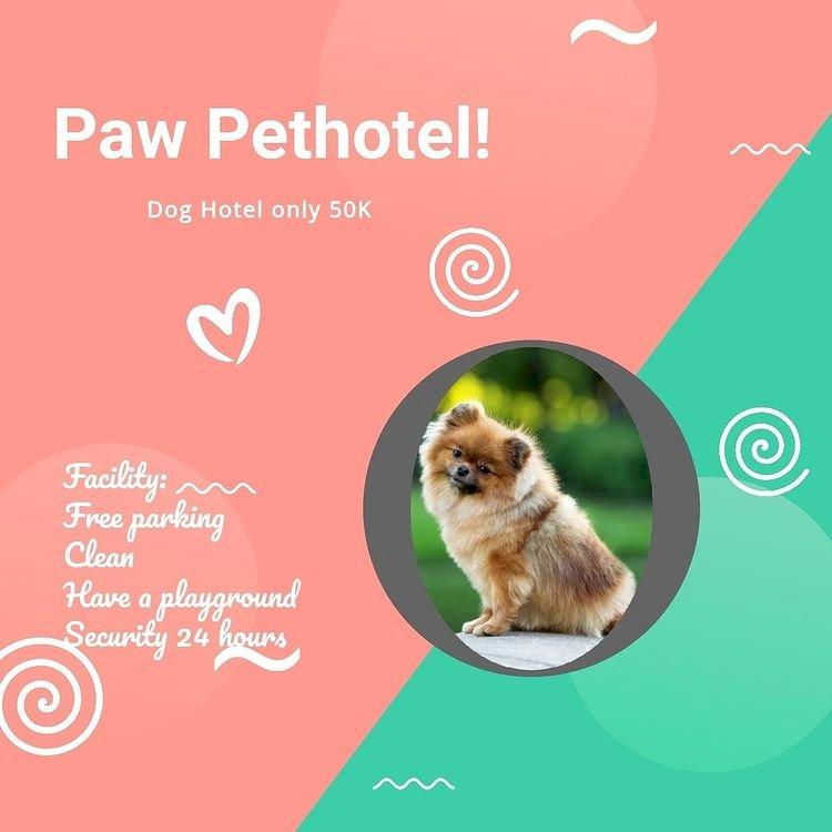 penitipan anjing di pakuwon city