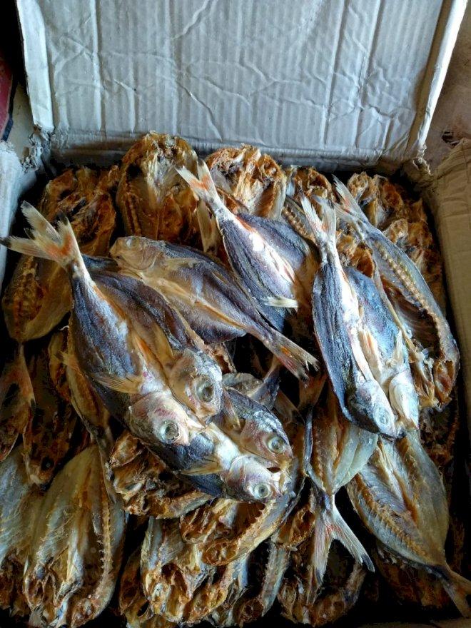 Ikan Asin Laut