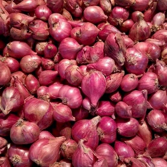 bawang merah/brambang