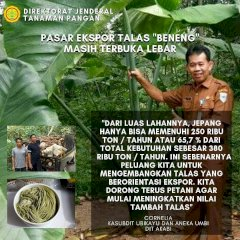 Petani Langit Indonesia